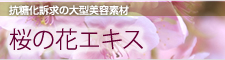 抗糖化訴求の大型美容素材 桜の花エキス